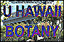 Hawaiian Native Plants